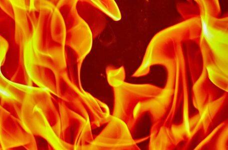 शिल्ली कलां में पशुशाला में लगी आग , जिंदा जली पांच गाय ,लाखों का नुकसान हुआ