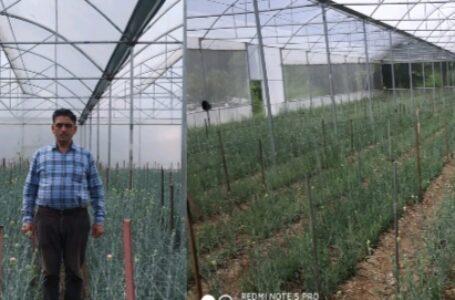 हिमाचल पुष्प क्रांति योजना प्रदेश के किसानों व बागवानों के लिए बेहद कारगर सिद्ध हो रही है