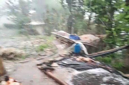 गत्ताधार में ओलावृष्टि से सेवा उत्पादकों को भारी नुकसान,अन्य फसलों को भी पहुंची क्षति